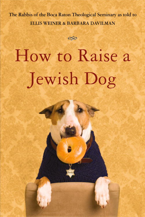 How to Raise a Jewish Dog By Weiner, Ellis/ Davilman, Barbara/ Burnstine, Susan (PHT)